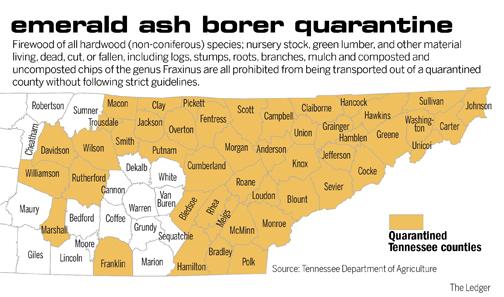 The Nashville Ledger - Emerald ash borer map
